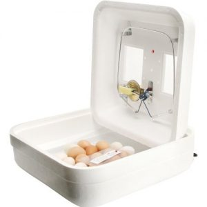 The Best Small Egg Incubator