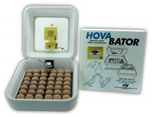 HovaBator Genesis 1588 Advanced Egg Incubator Combo