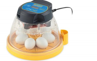 Brinsea Mini II Advance Automatic Egg Incubator Review